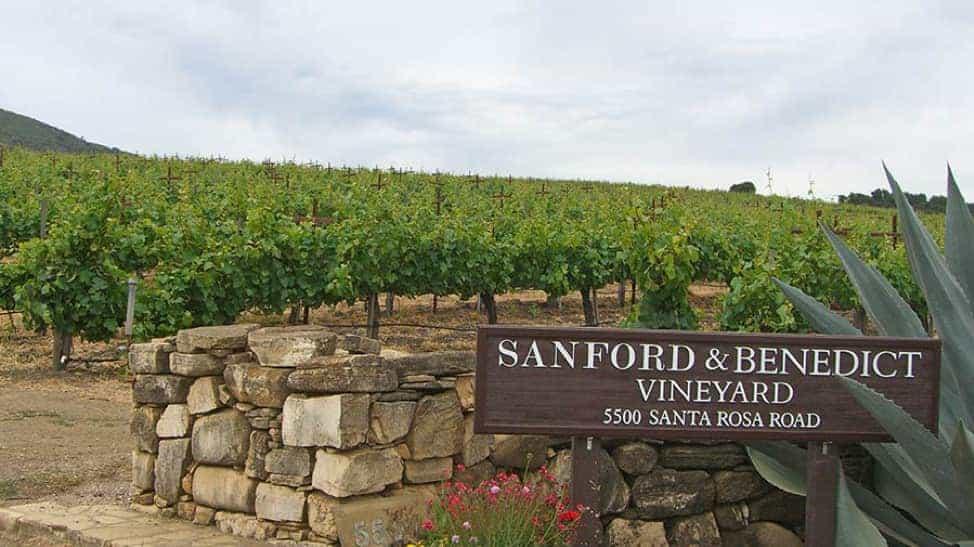 Sanford and Benedict Vineyard