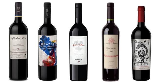 5 Argentian Malbec blends