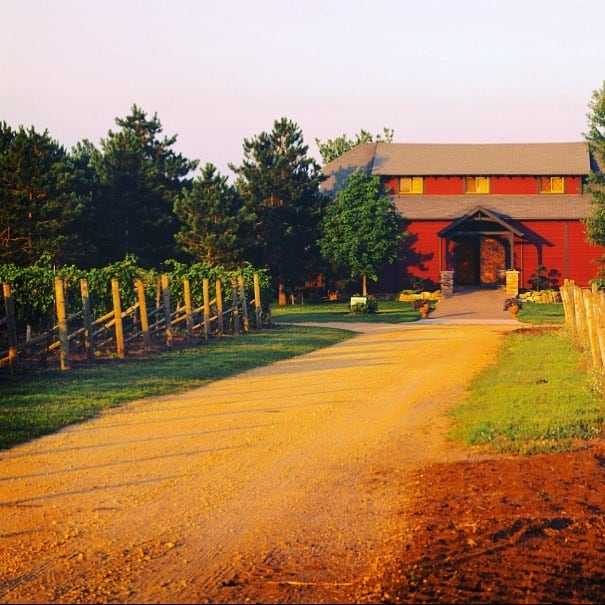 Alexis Bailly Vineyards 1