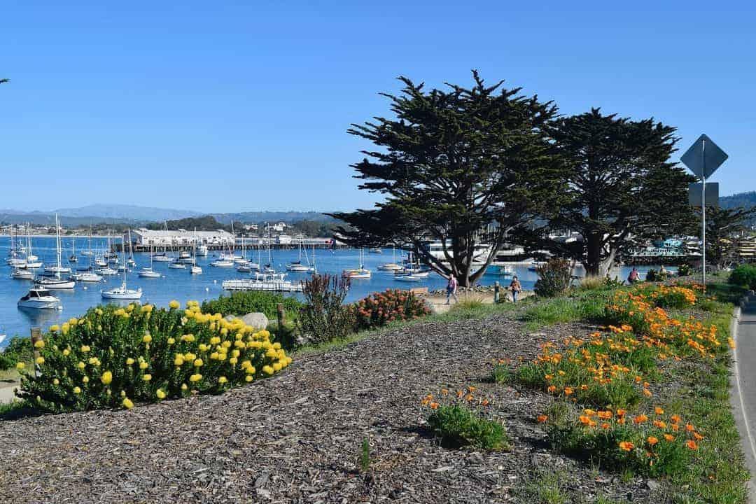 Best Wineries In Monterey