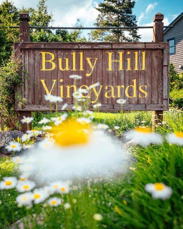 Bully Hill Vineyards 2