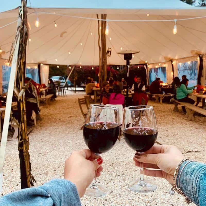 Cape Cod Winery Wine Tasting 1