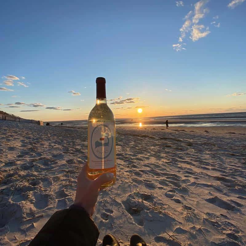 Cape Cod Winery Wines 2