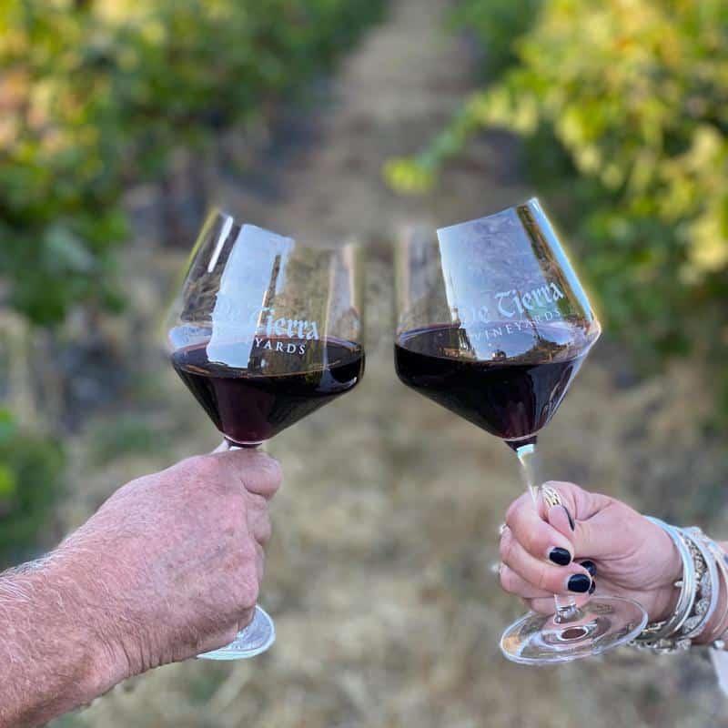 De Tierra Vineyards 2