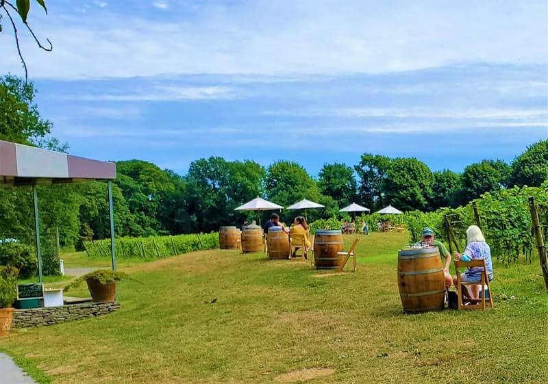 Do Greenvale Vineyards Offer Wine Tasting On Week Days 2