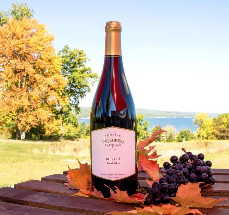 Domaine LeSeurre Winery 2