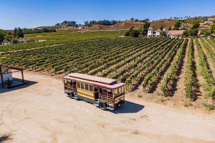 Fredericksburg Winery Tour with Lunch and Tastings