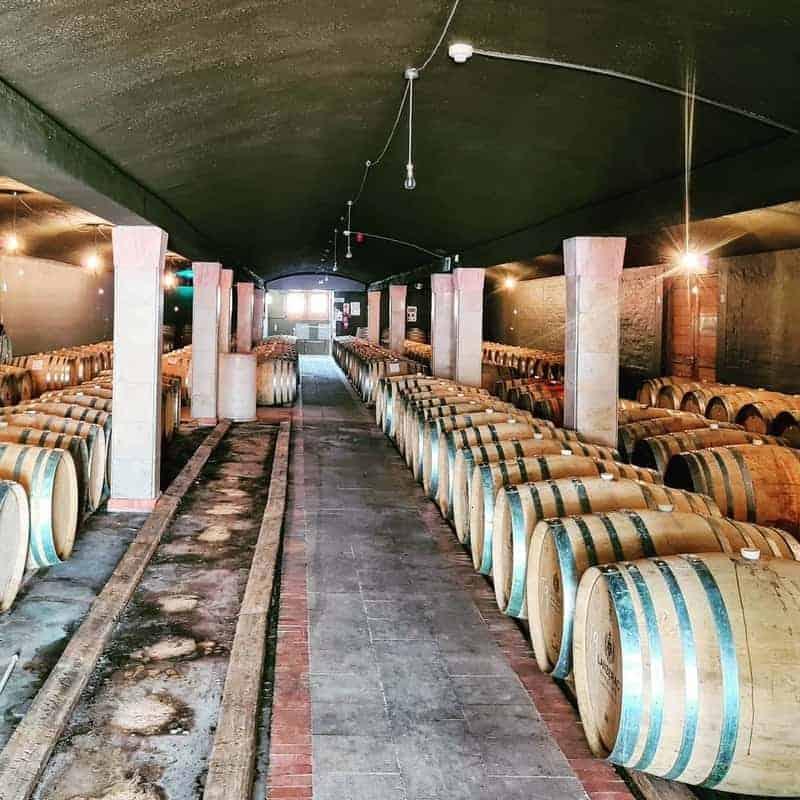 Lanzerac Wine Estate 3