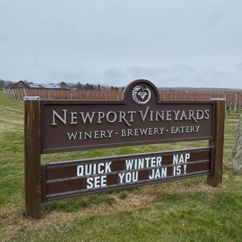 Newport Vineyards 1