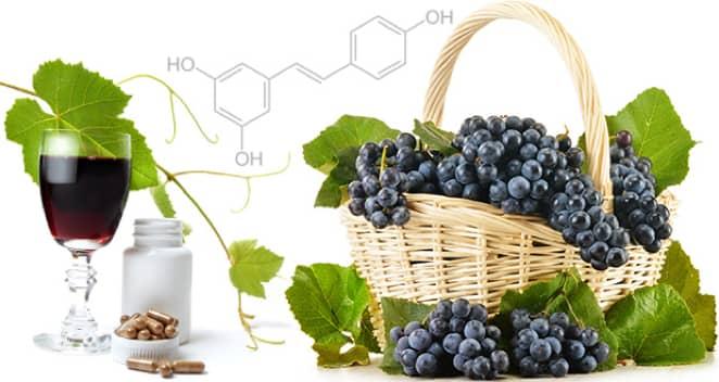 Resveratrol in Concord grapes