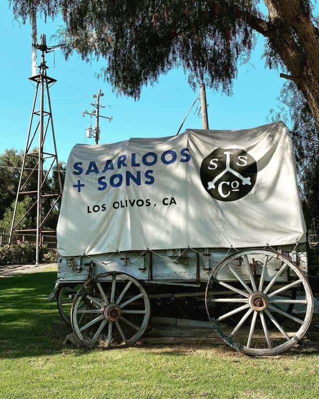 Saarloos & Sons 3