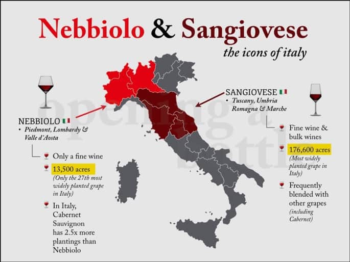 Sangiovese and Nebbiolo.