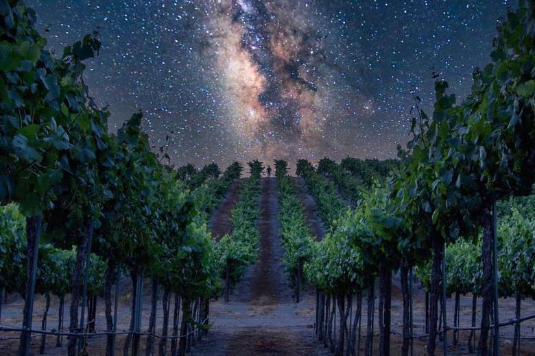Santa Ynez Winery