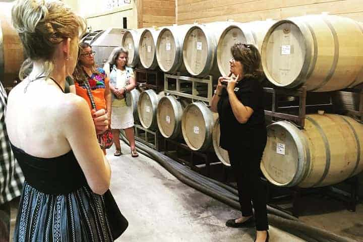Taste of Fredericksburg Wine Tour from San Antonio 1