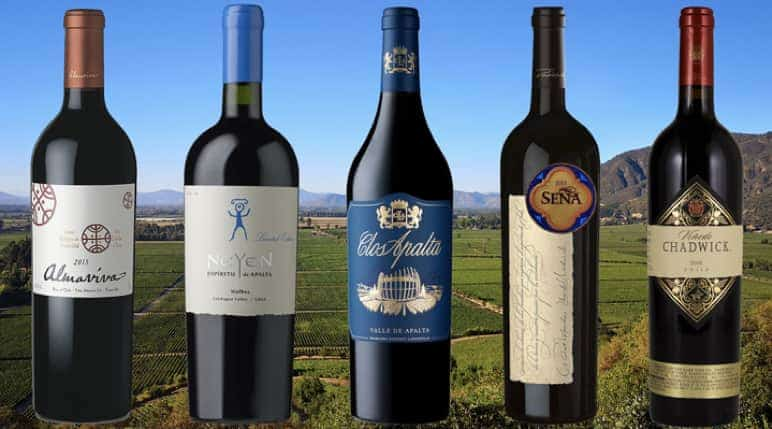 Top-rated Chilean wines