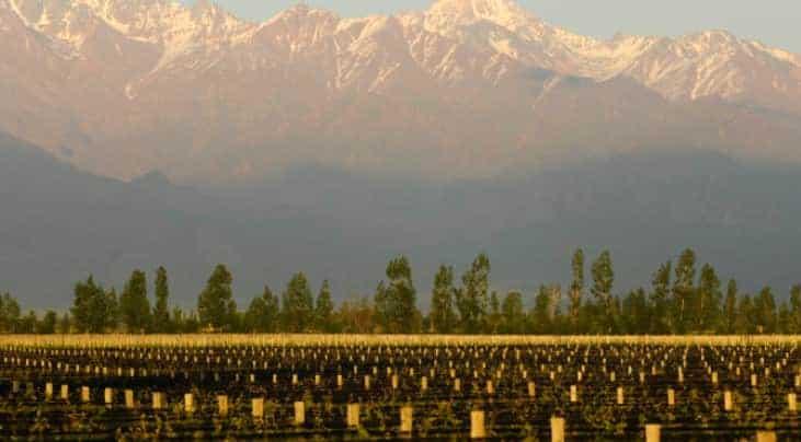 Uco valley wine region