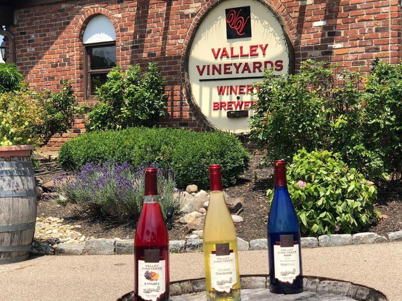 Valley Vineyards 1