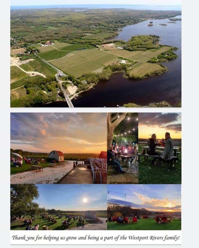 Westport Rivers Vineyard