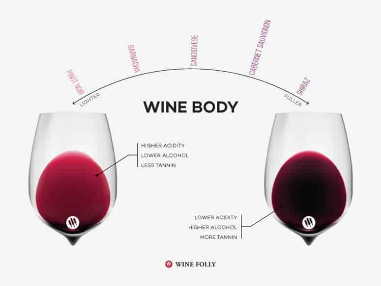 Wine body comparison