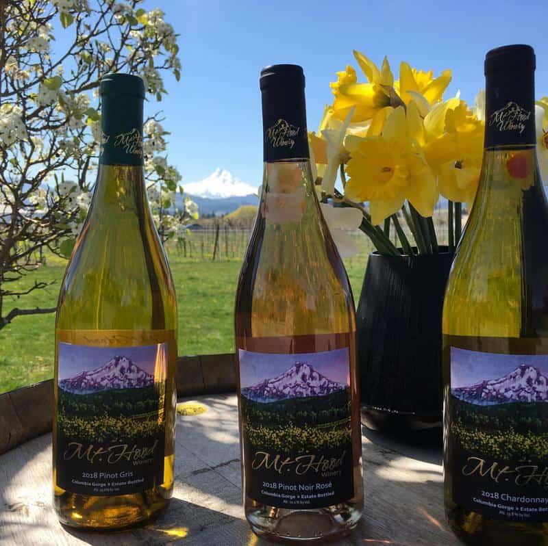 Mt. Hood Winery 2