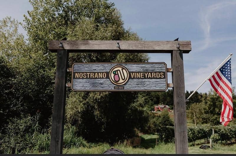 Nostrano Vineyards 1