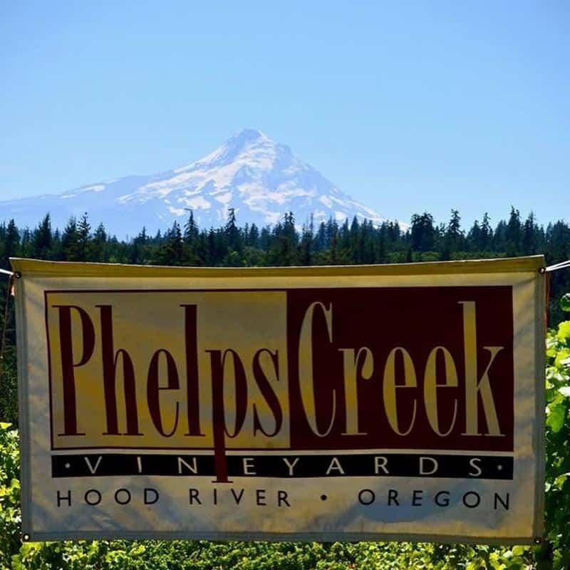 Phelps Creek Vineyards 1