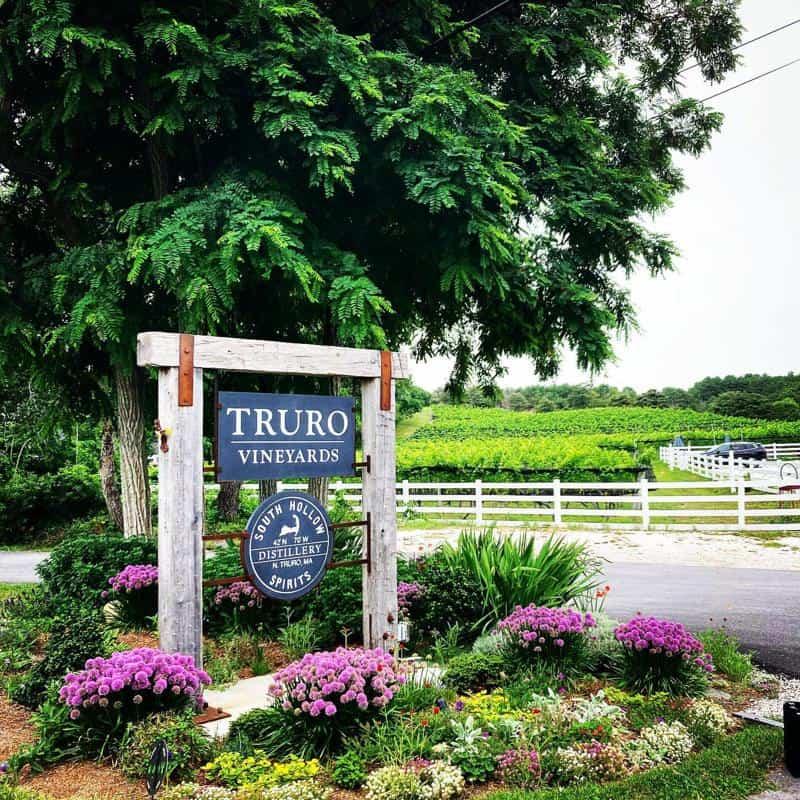 Visit Truro Vineyards