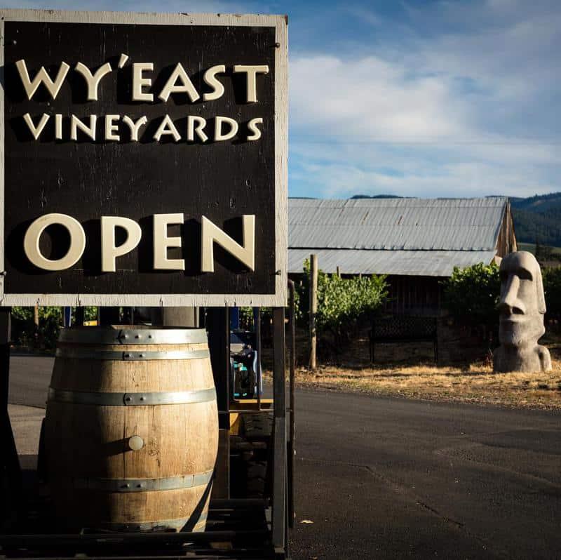 Wy'East Vineyards 2
