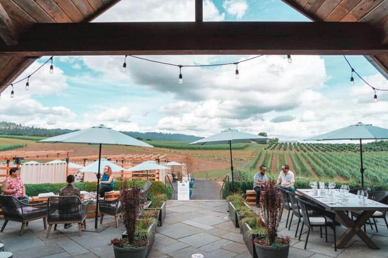 Adelsheim Winery 2