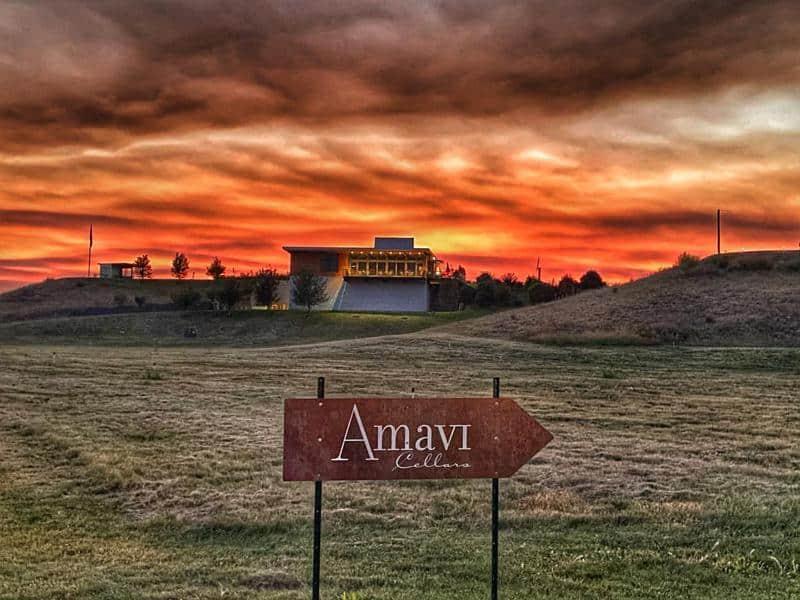 Amavi Cellars 1