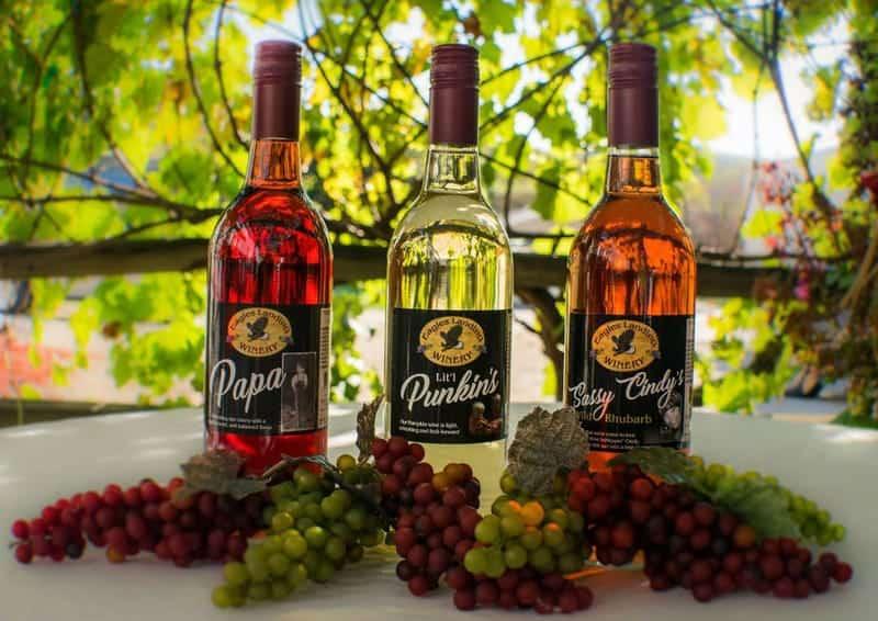 Eagles Landing Winery 1