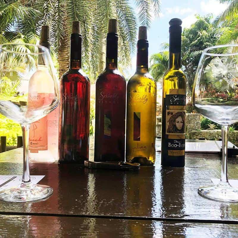 Schnebly Winery 2