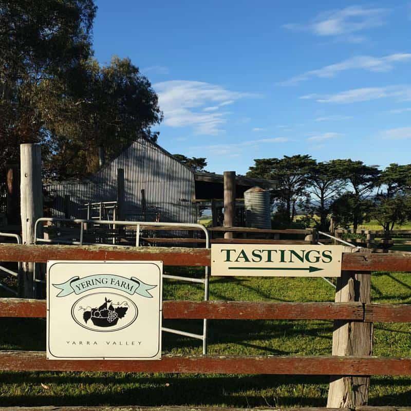 Yering Farm Wines 1
