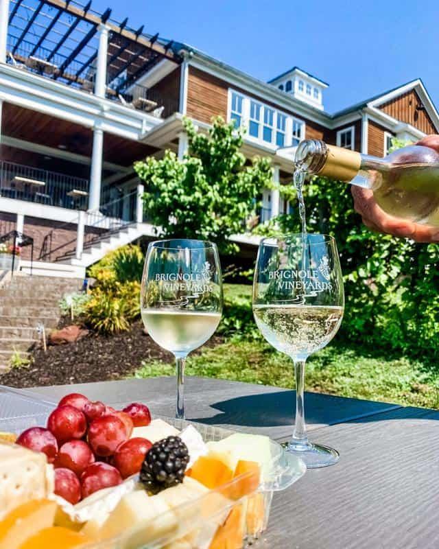 Brignole Vineyards 3