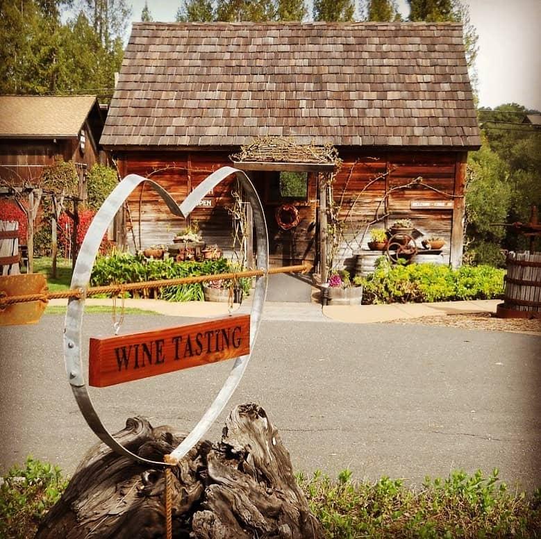 Husch Vineyards & Winery 3