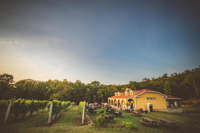 Paradise Hills Vineyard & Winery 3