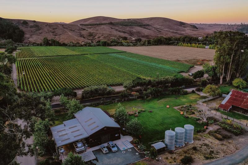 Stolo Vineyards & Winery 1