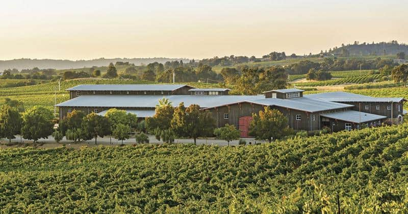 Terra d'Oro Winery 1