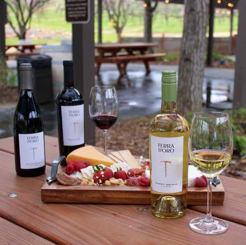 Terra d'Oro Winery 3