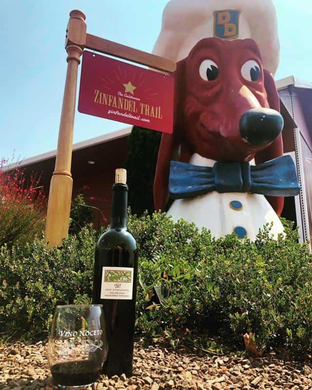 Vino Noceto Winery 3